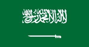 Kingdom of Saudi Arabia Human Resource Consultant (KSA)